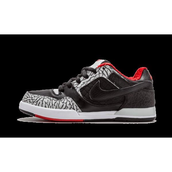 Homme Nike Paul Rodriguez 2 Zoom Air 315459-001