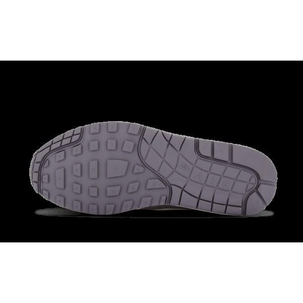 Nike Femme Air Max 1 Charcoal/Sail/Gym Rouge 319986-099