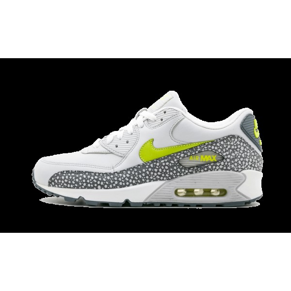 Nike Air Max 90 Leather Bright Cactus Flint Gris Leather Cactus Pack 302519-031